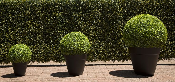 Artificial foliage is fairly inexpensive to buy and easy to maintain, requiring no water and little maintenance.