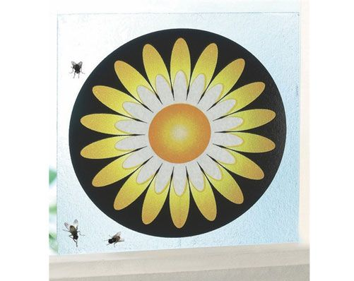 Sunflower Flytrap Window Stickers