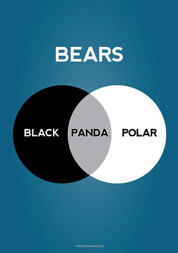 Les 25 meilleures ides de la catgorie diagrammes de venn sur le diagramme de des ours ccuart Images