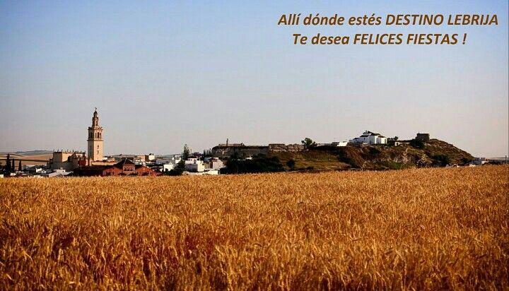 Allí dónde estés, Destino Lebrija te desea Felices Fiestas !