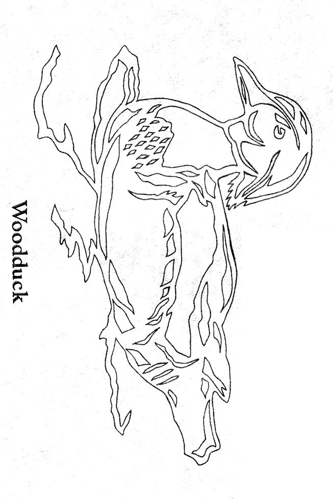 88 best marine life coloring pages images on pinterest