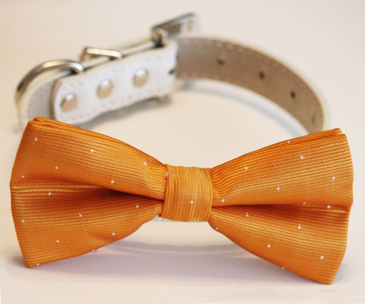17 Best Images About Burnt Orange Wedding Ideas, Burnt