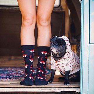 :) #cargomoda #happysocks #budapest #hungary #divat #fashion #shoes #socks #fashionlover #fashionaddict #fashionblogger #design #fun #photooftheday #bestoftheday #men #women #footwear #inspiration #smile #happy #colors #loveit