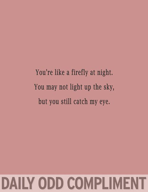 """Firefly"" - Daily Odd Compliment (and he does...)"