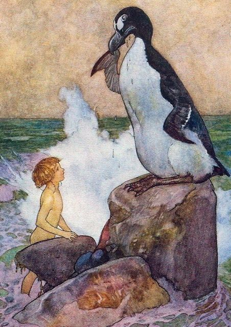 The Last Auk: In Charles Kingsley's strange classic of 1863, The Water Babies,  the last Great Auk (referred to as a Gairfowl)