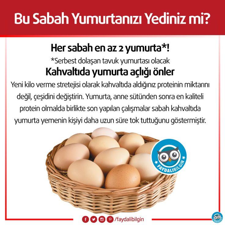 Bu Sabah Yumurtanızı Yediniz mi? #sağlık #yumurta #kahvaltı #günaydın #beslenme