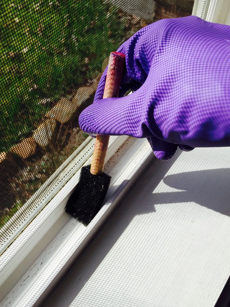 spring cleaning- use a pinesol solution and sponge brush to clean window tracks.