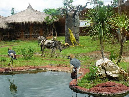 Di Secret Zoo Anda juga bisa mengunjungi kebun binatang yang modern dan atraktif, beserta wahana permainan dan hiburan yang menarik. (c) malang-guidance.com