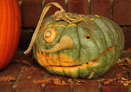 spooky green pumpkin #iloveavocadosforhalloween
