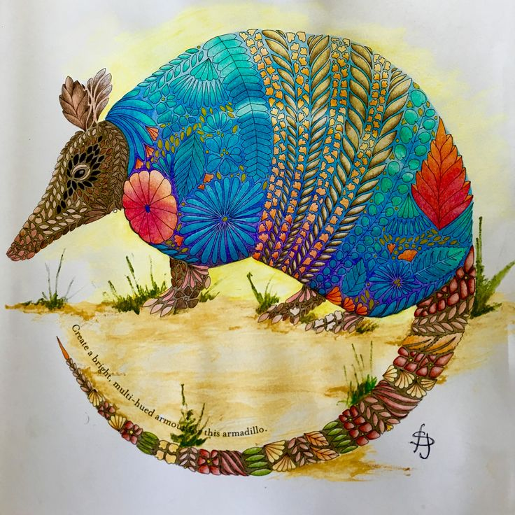 Millie Marotta Tropical Wonderland Adult ColoringColoring BooksArmadilloAnimal