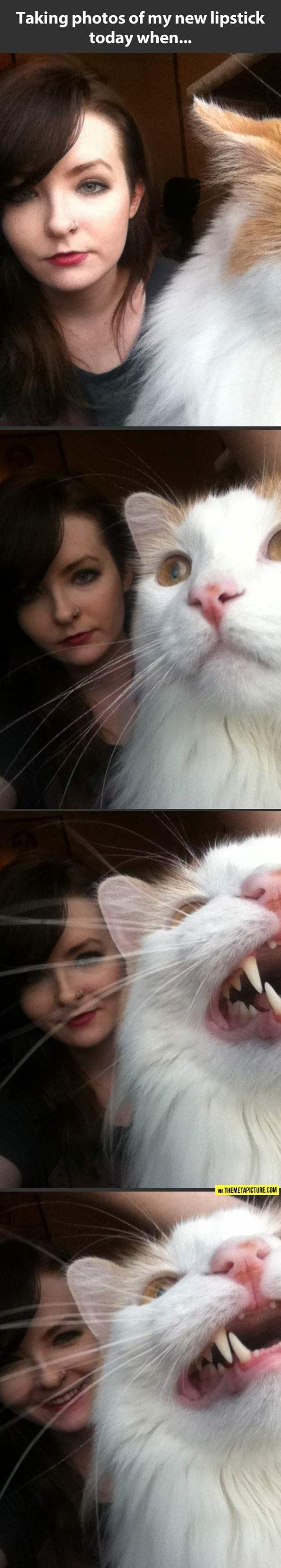 Cats.  Photobombing like a boss.