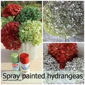 Spray paint hydrangeas.  Add a pop of color with some dried, painted hydrangeas.  Very easy to do! - Momcrieff