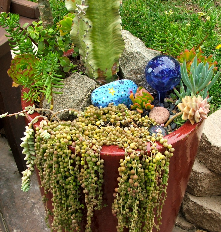 17 Best images about DIY Succulent Landscaping Design on