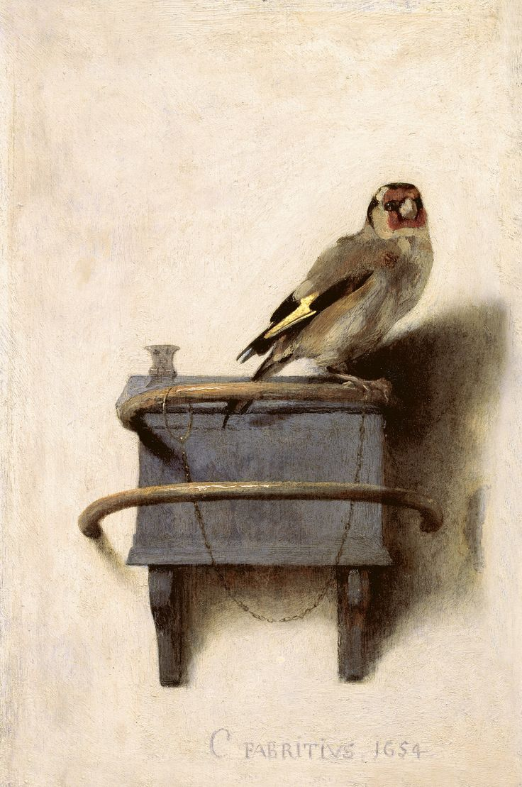 Carel Fabritius, Il cardellino, 1654  See more at: http://www.tripartadvisor.it/il-mito-della-golden-age-vermeer-rembrandt/