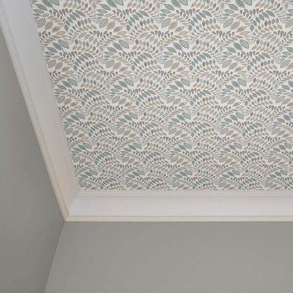 Blumberg Peel Stick Wallpaper Wallpaper Ceiling Peel And Stick Wallpaper Wallpaper Roll