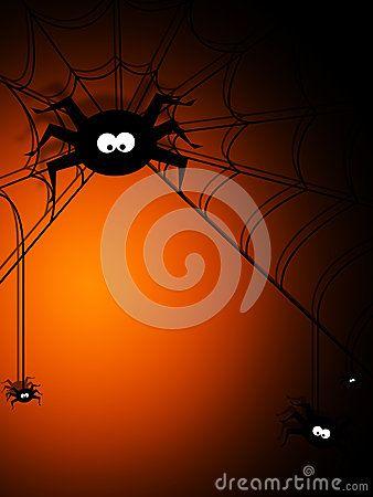 Venomous Spider Stock Photos, Images, & Pictures – (940 Images) - Page 8