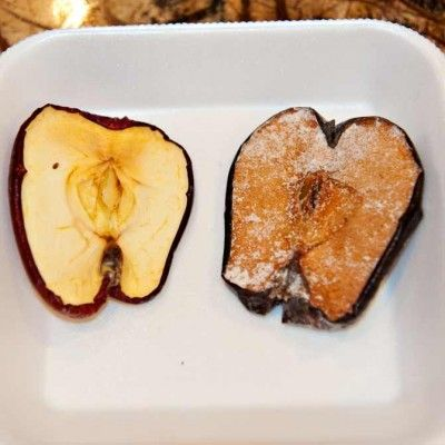 Mummify an Apple project (perfect for chapter 4)