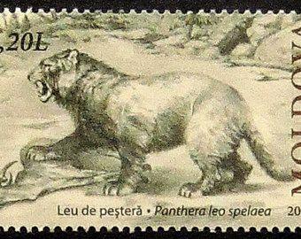 European cave lion, Panthera leo spelaea -Handmade Framed Postage Stamp Art 20945AM
