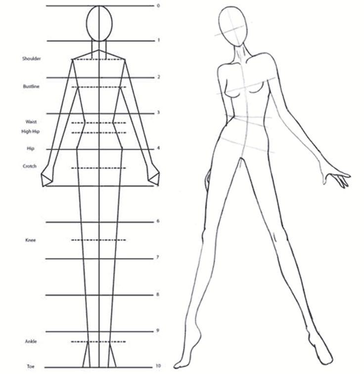 Fashion Design Body Outline Image Search Results cakepins.com