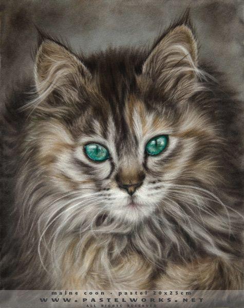Gallerie des portraits des chats - Art Animalier - Portraits des chien et chats…