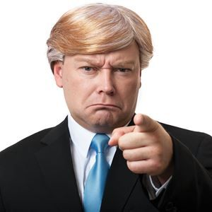 Mr. CEO Trump Wig - 377732 | trendyhalloween.com