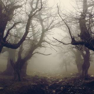 Cemeteries Ghosts Graveyards Spirits: Haunting.
