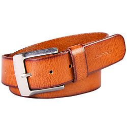 Camel Colored Leather Belt from Fastrack to Kolkata, West Bengal Rs. 1400 / $ 23.33