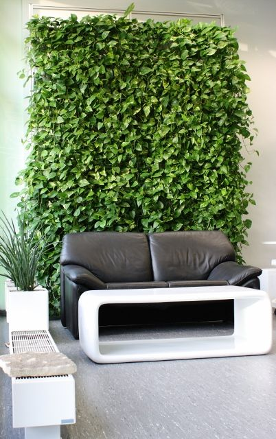 130 best Vertical Gardening images on Pinterest Gardening, Home - der vertikale garten live screen danielle trofe