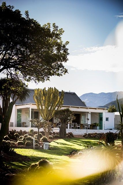 Guide to the Little Karoo, South Africa (Condé Nast Traveller)