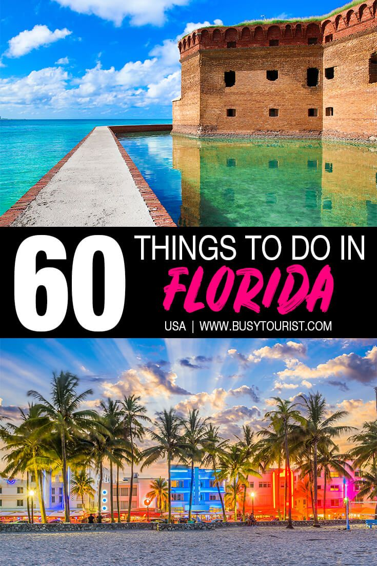 60 Best Things To Do Places To Visit In Florida Florida Travel Us Travel Destinations Vacation Usa