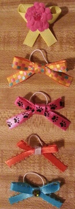 Dainty dog bows