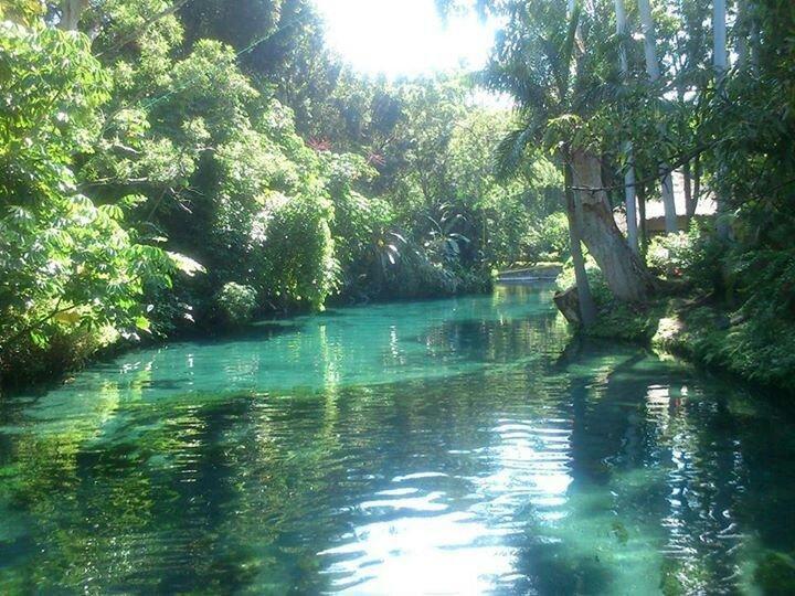 Parque Natural Las Estacas, Tlaltizapán: Ve 81 opiniones y 71 fotos de viajeros, y unas grandes ofertas para el Parque Natural Las Estacas, puntuado en el puesto no.1 de 1 hotel especializado en Tlaltizapán y con una puntuación de 4,5 sobre 5 en TripAdvisor.