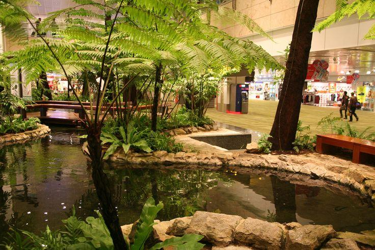 22 best koi pond indoor images on pinterest indoor for Indoor koi aquarium