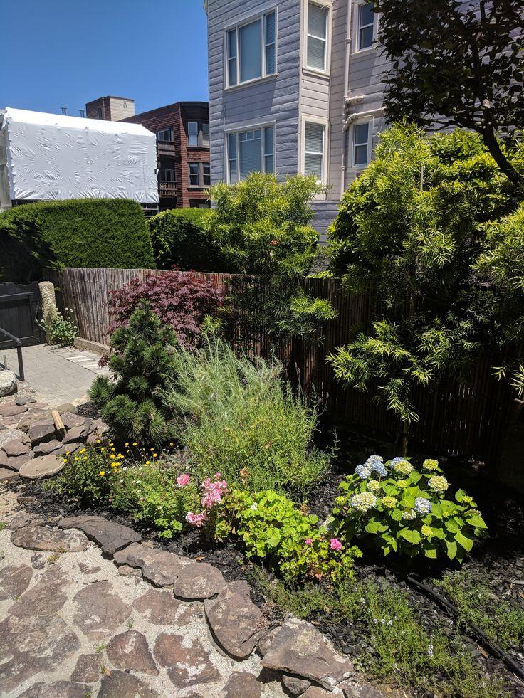 Find This Pin And More On Von Platen Yard By San Francisco Urban Garden.