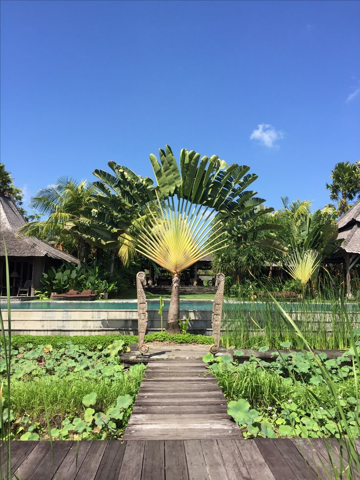 Beautiful Bali Villa | info@affittabali.com | AFFITTABALI.COM