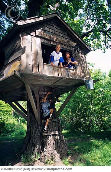 Best 25 treehouses ideas on pinterest treehouse ideas for Cool backyard tree houses