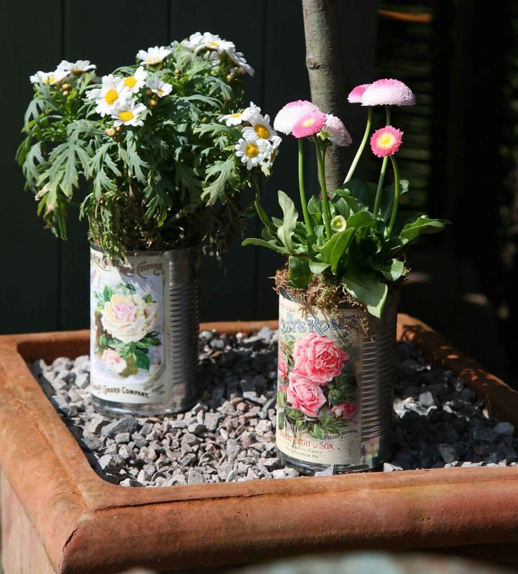 decorating tin cans | use the seed packets to decorate the tin cans | gardening & homeste...