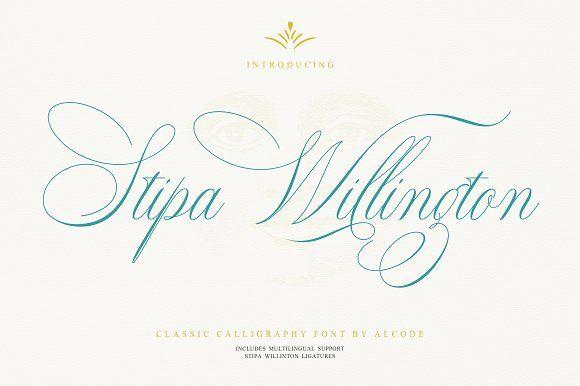 Stipa Willington by Alcode on @creativemarket