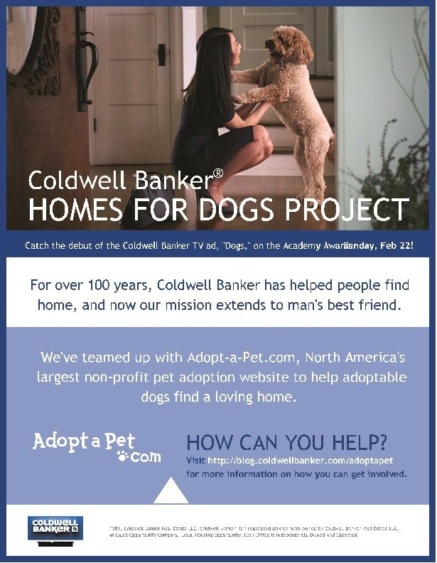 Homes for Dogs...Coldwell Banker has been finding homes for people for over 100 years, now they will extend this to man's best friend.
