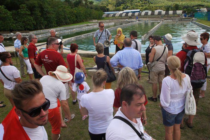 Csapatunk a Spirulina medence mellett http://naturspirulina.blogspot.hu/p/hatasai.html