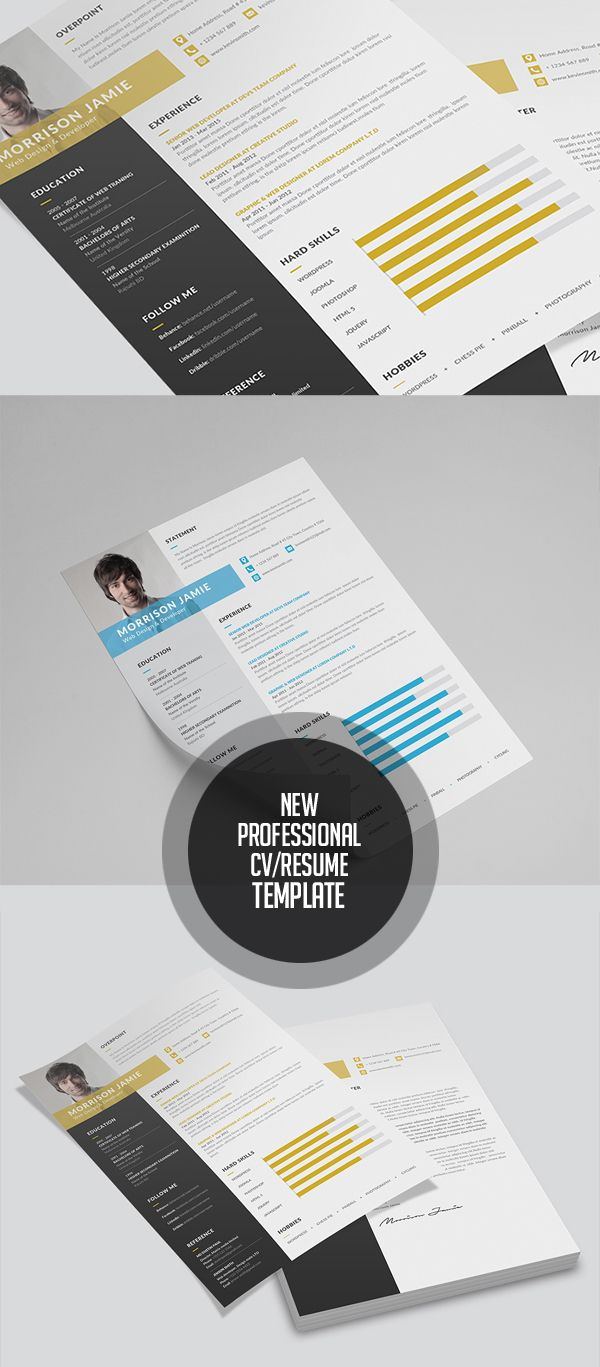 dallas resume service%0A Professional Resume   CV Template
