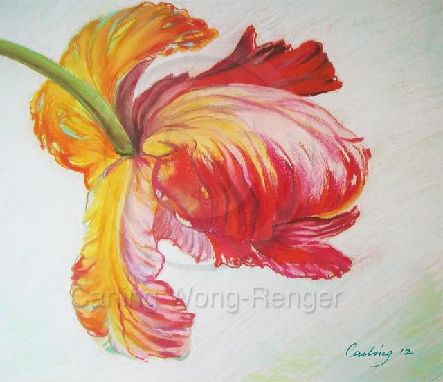 Firebird Parrot Tulip by Carling Wong-Renger, via Flickr