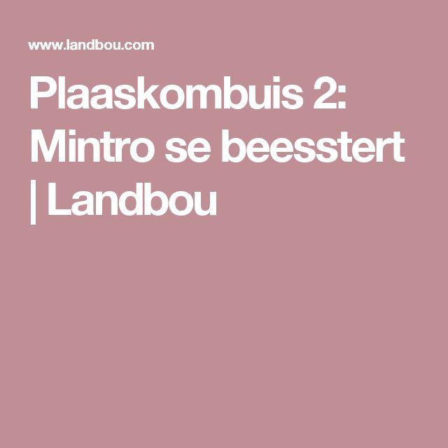 Plaaskombuis 2: Mintro se beesstert | Landbou