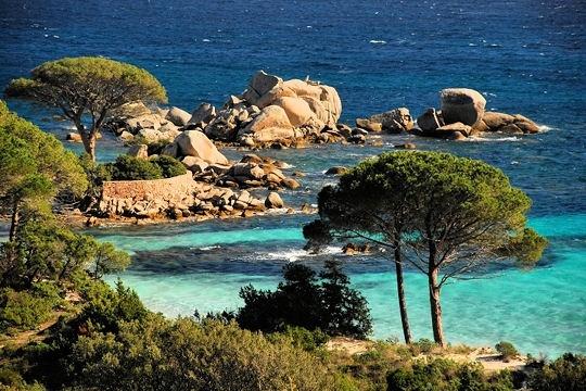 La plage de Palumbaggia se situe dans les environs de Porto-Vecchio. Cette longue étendue de sable fin ponctuée de blocs de porphyre rouge est l'une des plages les plus réputée de Corse.