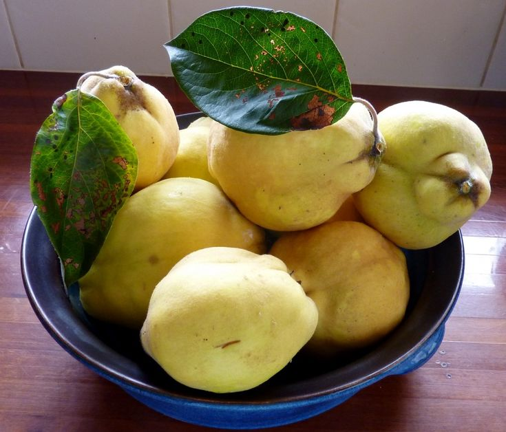 560 best images about Quince Recipes on Pinterest ...