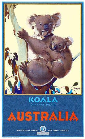 Koala (Native Bear), Australia by  James Northfield c.1932  http://www.vintagevenus.com.au/vintage/reprints/info/TV578.htm