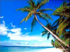 A Beach on the island of Rota in the  Commonwealth of the Northern Mariana Islands