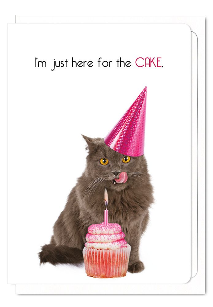 Funny Cat Birthday Card Cat Lover Cake Greeting Humorous Cupcake Cards Blank Ezendesigns Al Cat Birthday Card Cat Birthday Greetings Cat Birthday Cards Funny