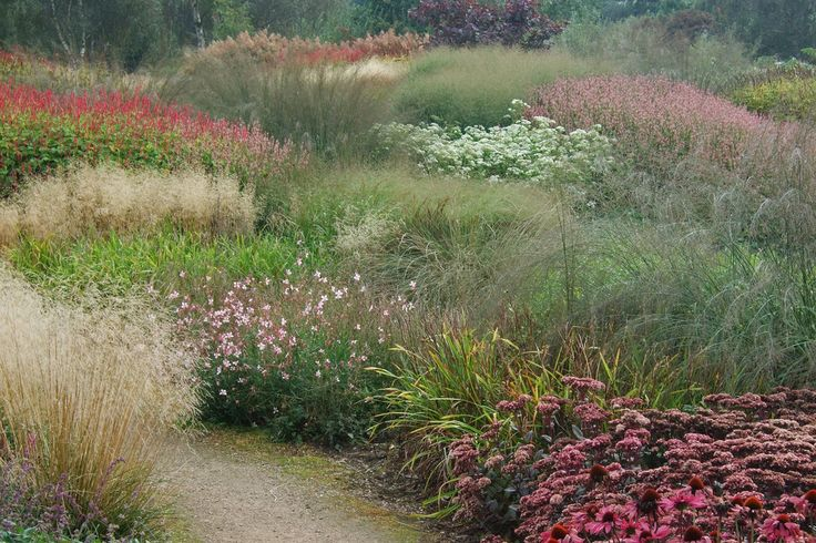 late flowering perennials and grasses Millennium Garden at Pensthorpe Wildfowl Reserve, Norfolk, UK. - 15th September, 2008...men ziet de sedum in de voorgrond...we zien dat sedum het altijd goed doet in combinatie met grassen