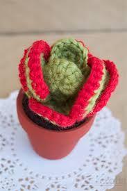 crochet succulent pattern - Buscar con Google